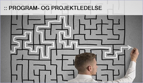 Program- og projektledelse